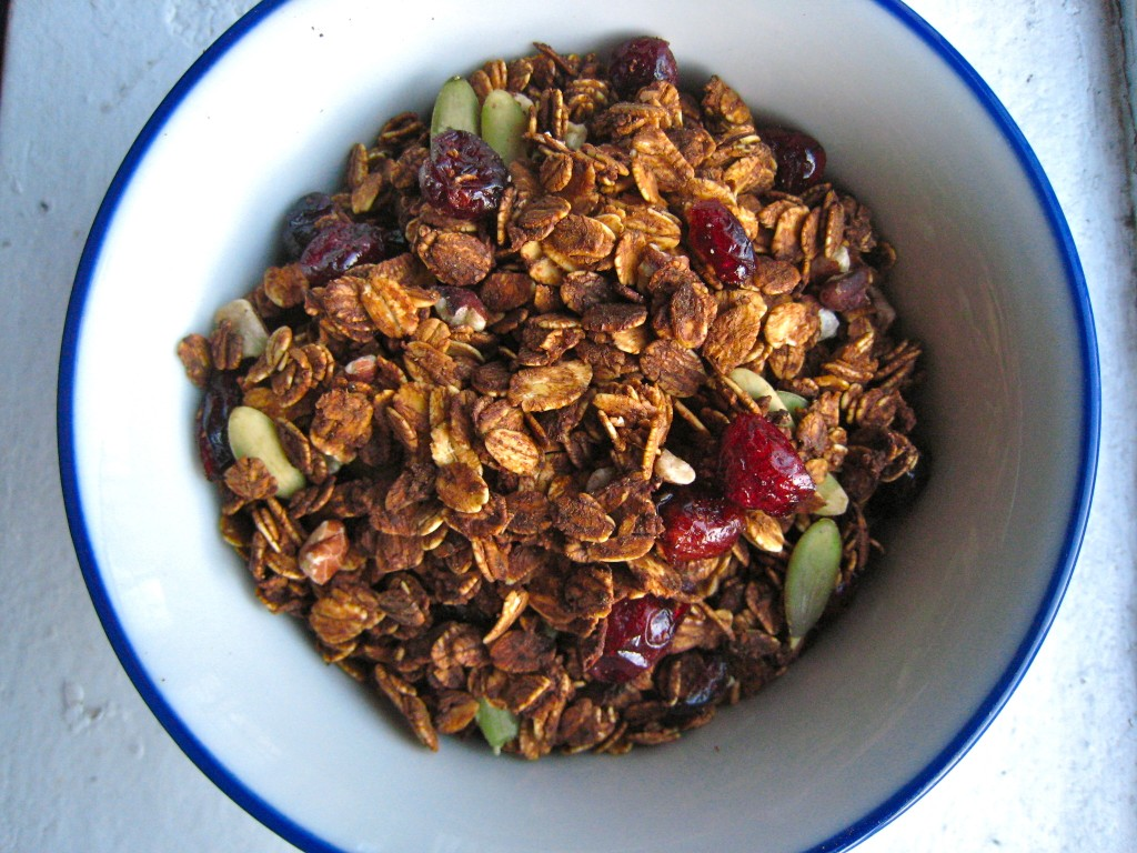 Whether you eat it with milk, yogurt or totally on its own, Pumpkin Granola is a tasty way to get the day started! TheCornerKitchenBlog.com