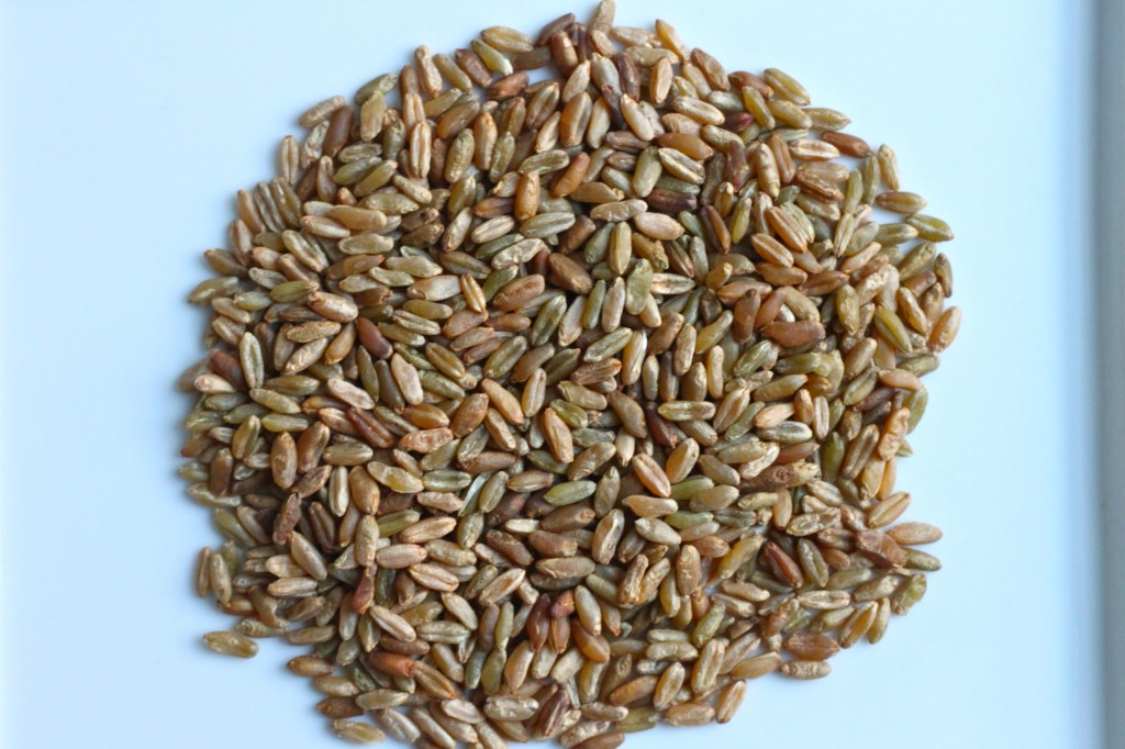 how to cook freekeh wheat