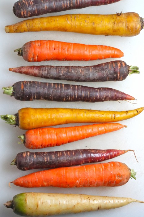 Coriander Roasted Rainbow Carrots