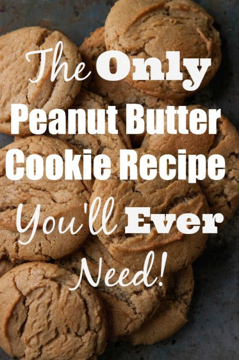 Everyone needs a great, go-to Peanut Cookie recipe....here