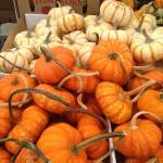 Weekend Things + pumpkins
